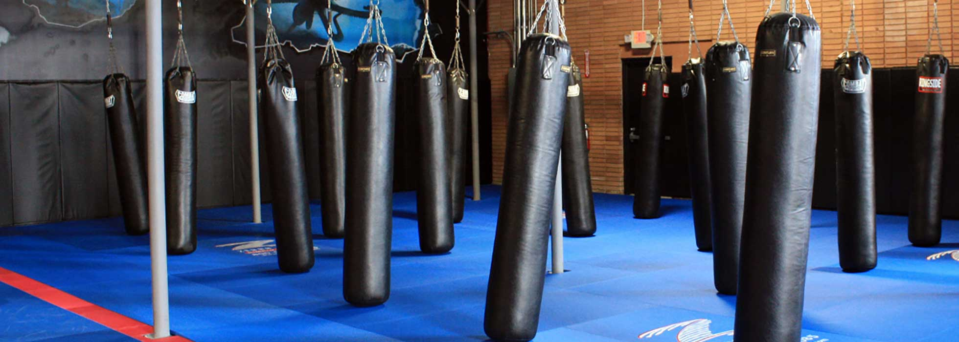 Kickboxing Classes near Atlanta GA, Kickboxing Classes near Cartersville GA, Kickboxing Classes near Chamblee GA, Kickboxing Classes near Midtown Atlanta GA, Kickboxing Classes near Sandy Springs GA, Kickboxing Classes near Dacula GA